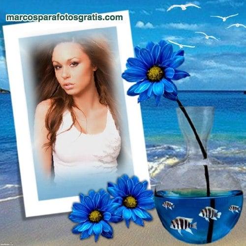 marco de margaritas azules y pececitos