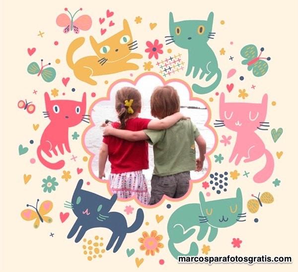 marcos con gatos