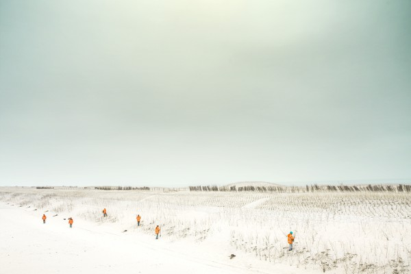 Every single inch planned landscape at the Dutch shore, close to the city of Schoorl
