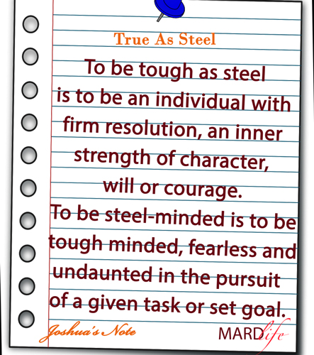 True As Steel – JOSHUA'S NOTE