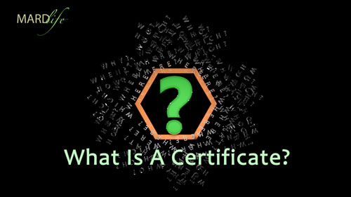 What Is A Certificate? - Rhetorics