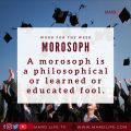 Morosoph, Fool, Education, Educated, Idiot, Foolish, Stupid, Learned, Wisdom, Facts, Knowledge,
