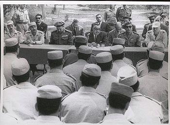 الرئيس جمال عبد الناصر، محمود فوزي، ...، الجمسي