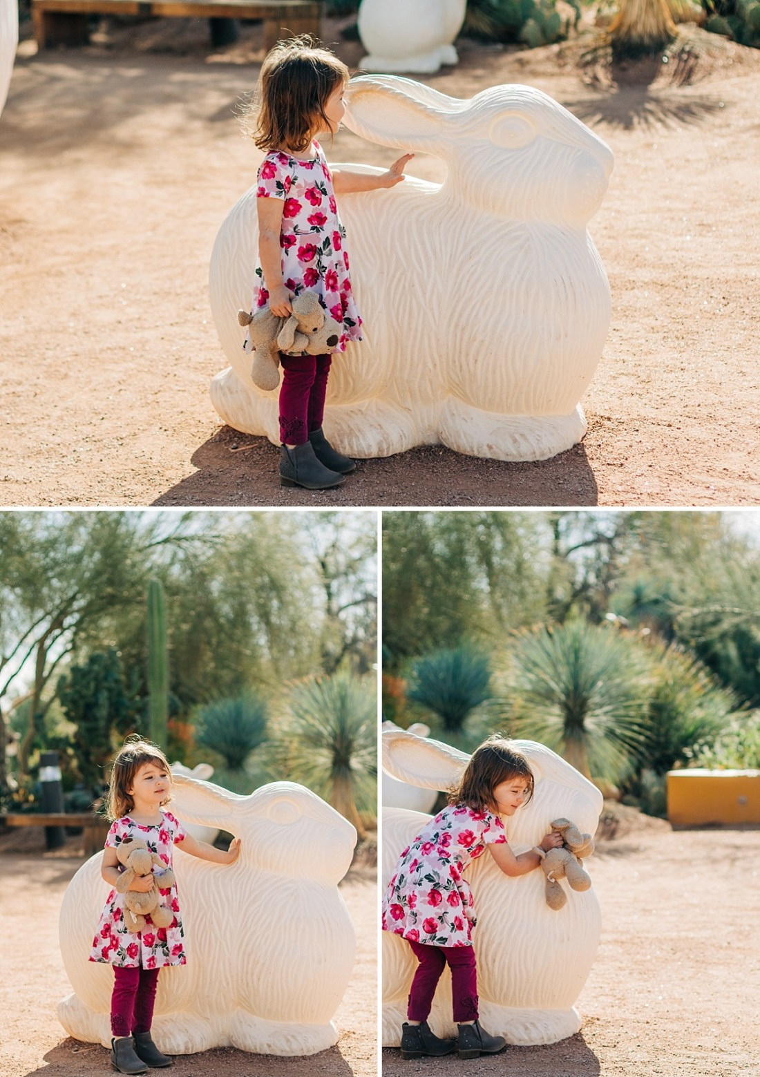Desert Botanical Garden Community Day   Arizona Photographer