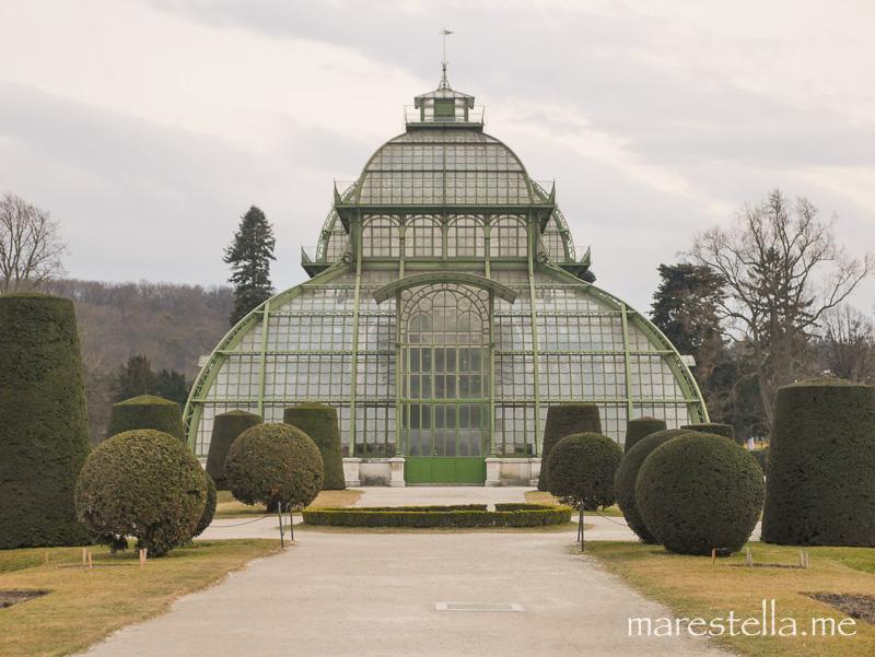 Palmenhaus_marestella (19 von 20)
