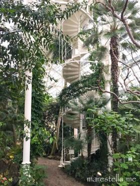 Palmenhaus_marestella (8 von 17)