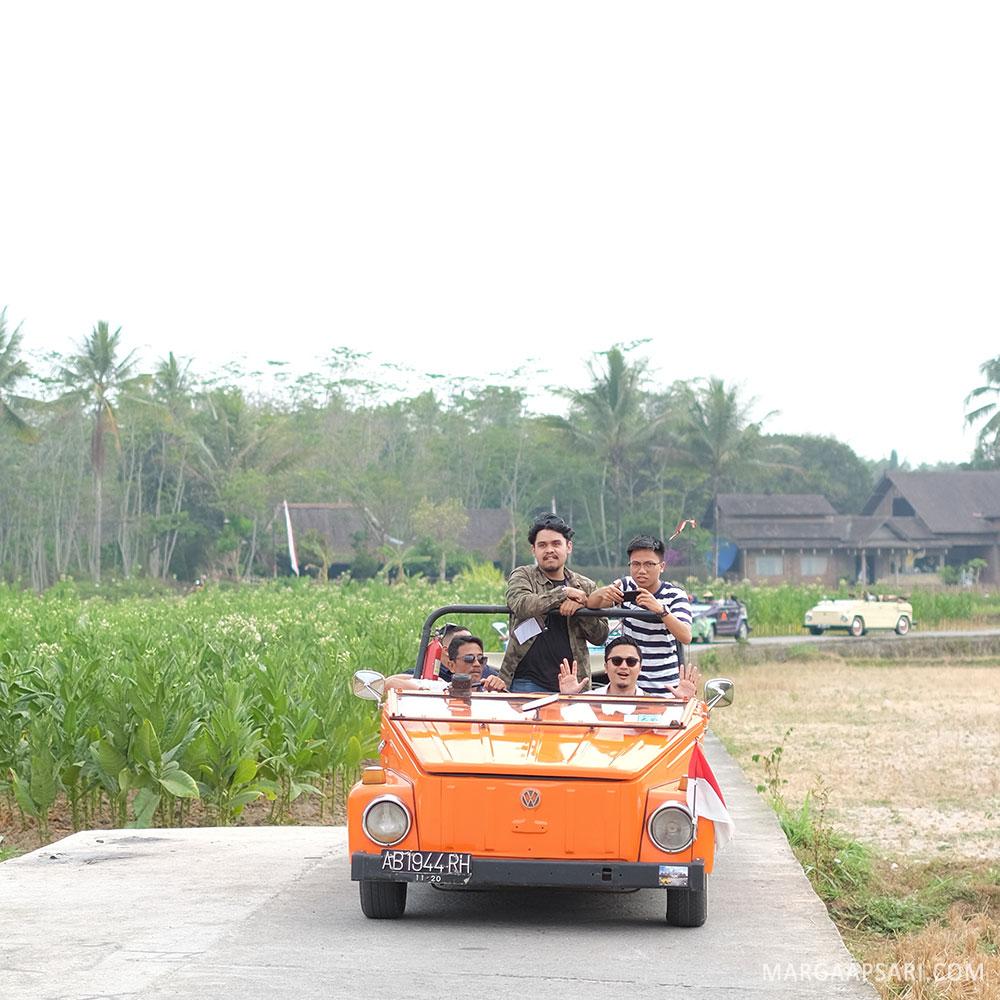 Jalan-jalan di perkebunan tembakau Magelang
