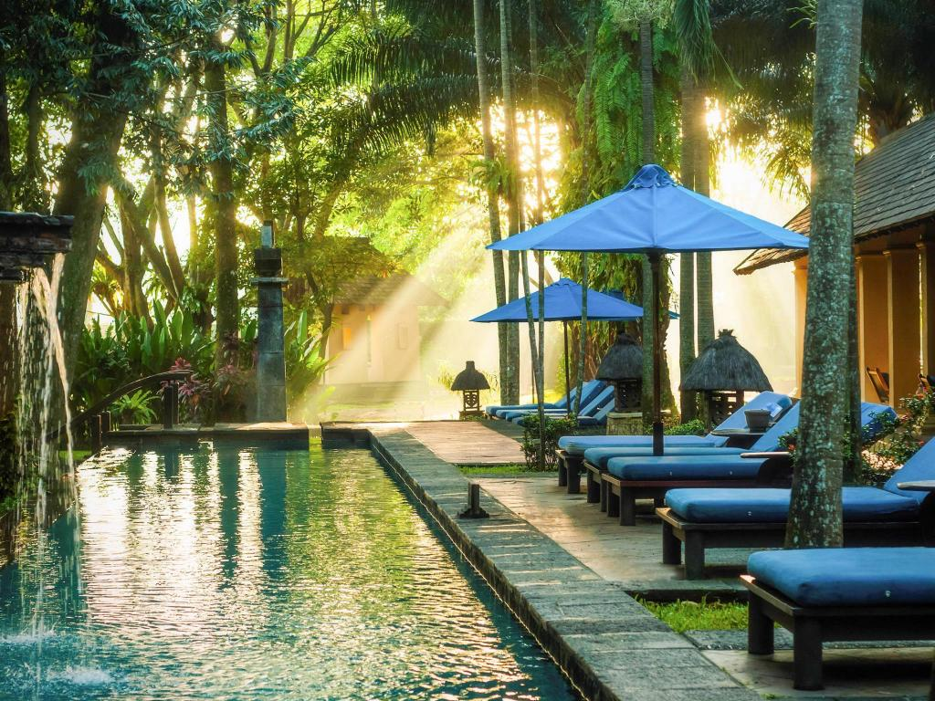 Kolam renang di Novotel Bogor