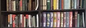Book shelf with fairy tale books.
