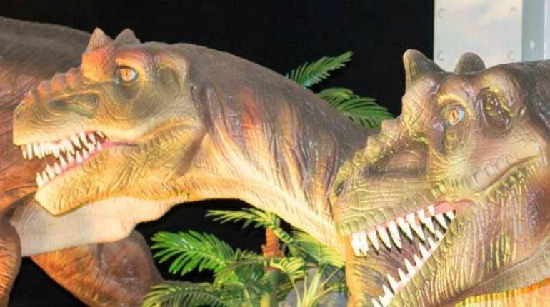 Centre des sciences dinosaures