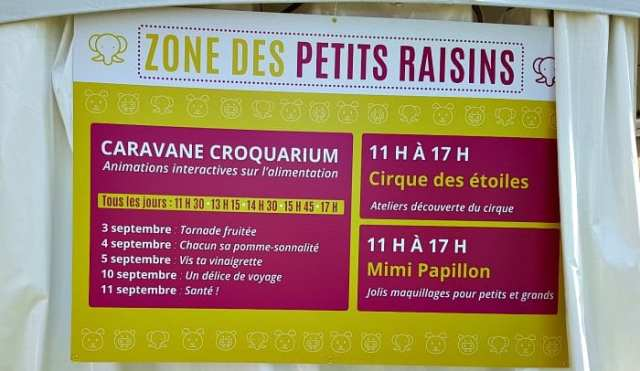 zone-petits-raisins