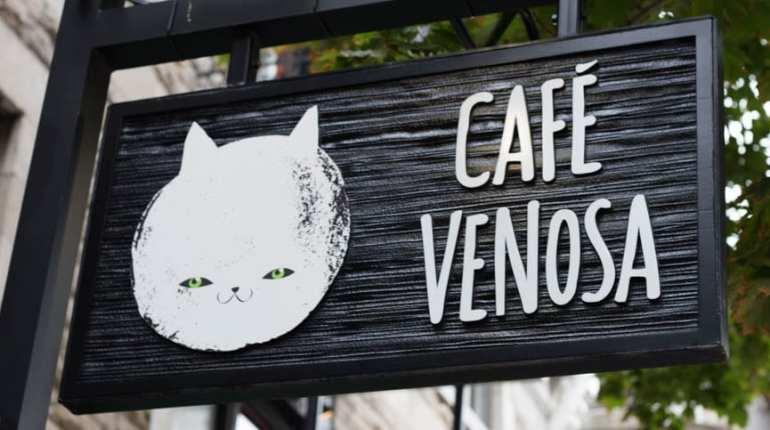 Café Venosa