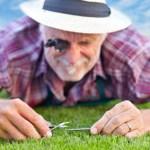 Close up of senior gardener cutting grass 3