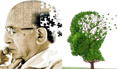 Výsledok vyhľadávania obrázkov pre dopyt alzheimer