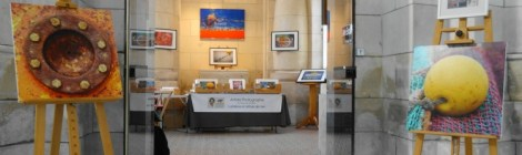 Exposition Olivier Pravert Galerie Esquié La Rochelle