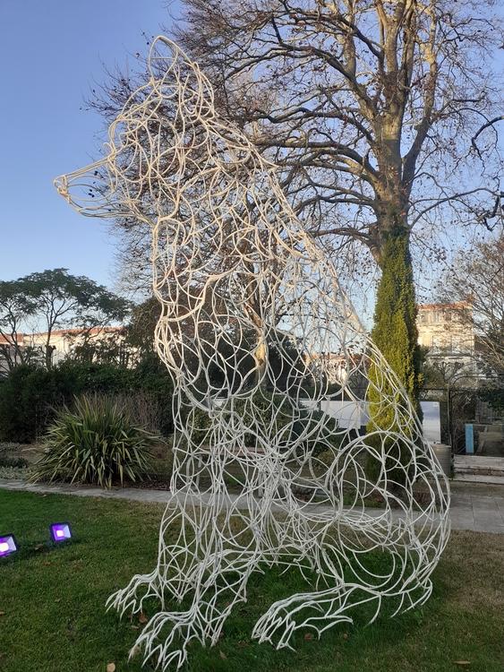 Olympia de Thomas Monin - Muséum La Rochelle