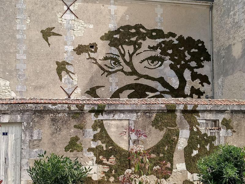 Graff végétal EPSIG - CDC ILe de ré