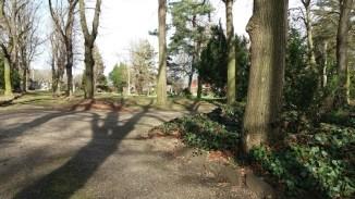 Arboretum der Baumpark in Plauen - März 2020