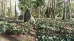 Arboretum der Baumpark in Plauen - März 2020 Grab von L. Ridel