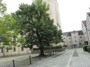 Test_einer_barrierefreien_Stadtführung_Plauen_Tester