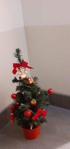 Weihnachtsbaum zum dran vorbeigehen.