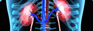Chronic Kidney Disease, Questions & Answers