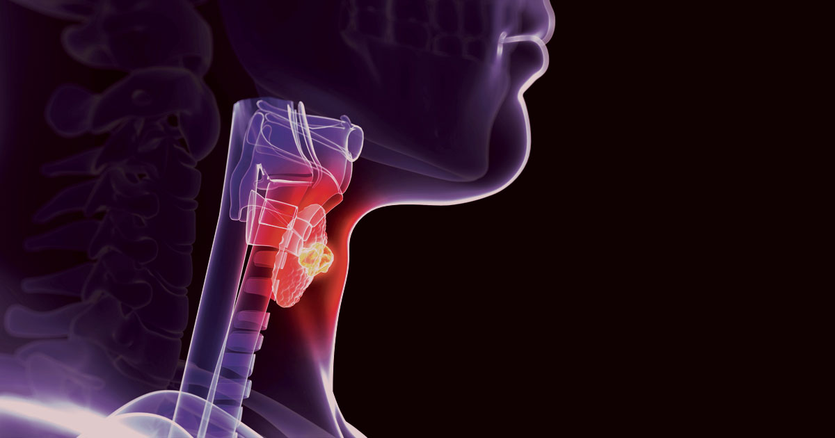 2 Predictions of Thyroid Function Test