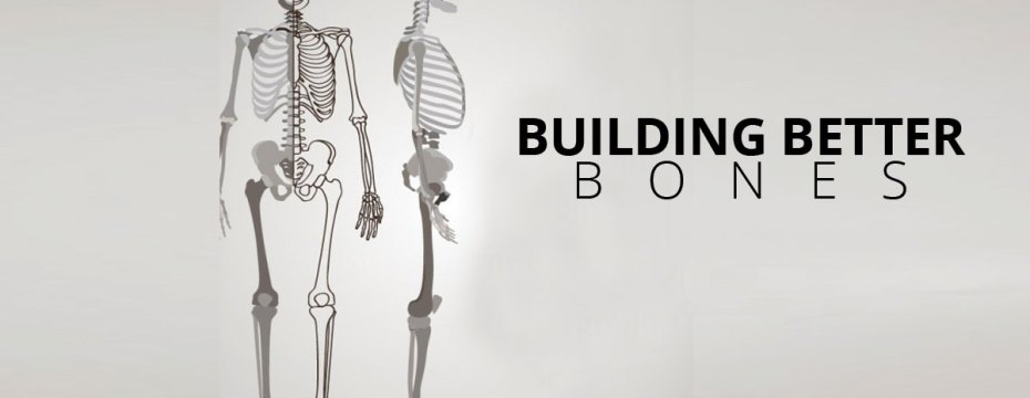 Rules to Build Better Bones