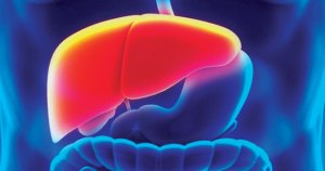 Hepatobiliary Disorder; Facts and Treatment Methods
