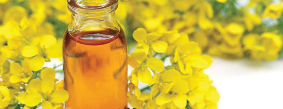 16 Health Boosting and Protective Benefits Of Mustard Oil