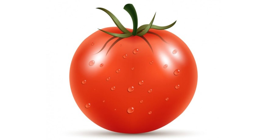 tomatoes are anti cancer