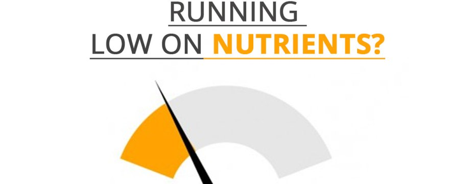 5 Indications that You are Running Low on Nutrients