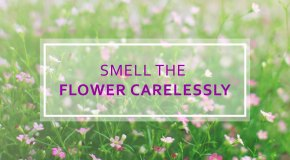 5 Preventive Cares to Control Spring Allergy