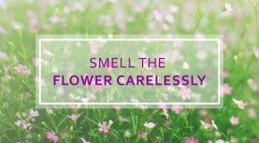 5 Preventive Caresto Control Spring Allergy