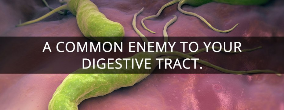 Helicobacter pylori - A Common Enemy of Your Digestive Tract