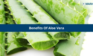 4 Benefits Of Aloe Vera You Should Know!