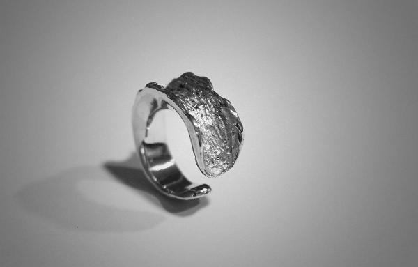 anillo-corteza-plata