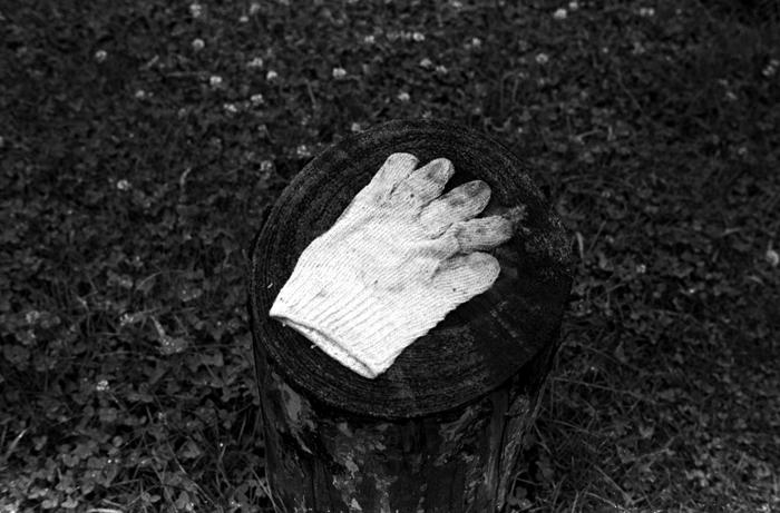 Glove 2012