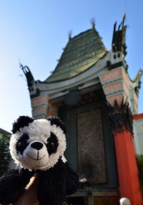 I was trying to take a picture of the great Grauman's Chinese Theatre and Benji photobombed the picture. Silly boy.