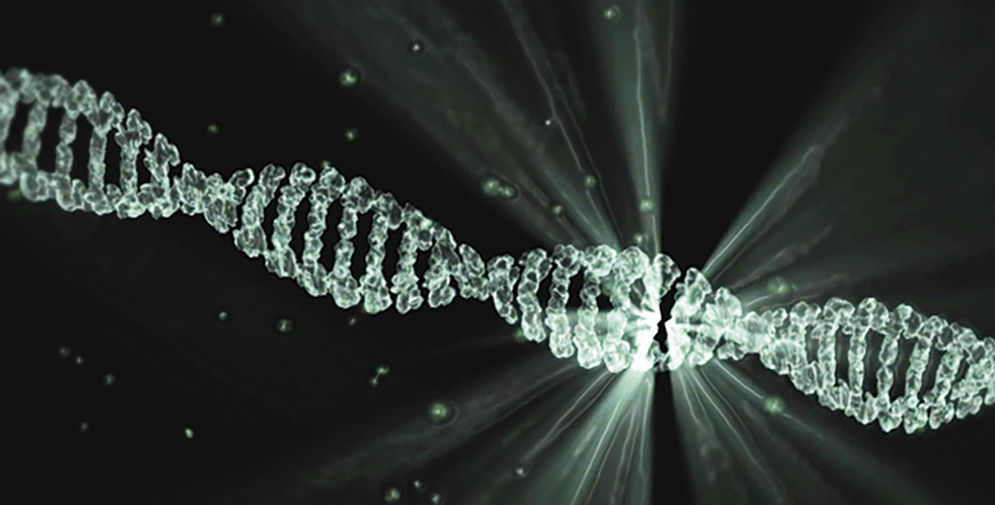 El alcohol daña el DNA y produce cáncer