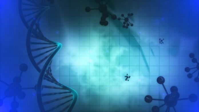 Epigenetica_Hepatocarcinoma_Cancer_Biotecnologia_Maria_Iranzo_Biotec