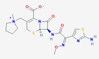 Cefepima_Nanoesferas_Transporte_Antibioticos_ Biotecnologia_Maria_Iranzo_Biotec