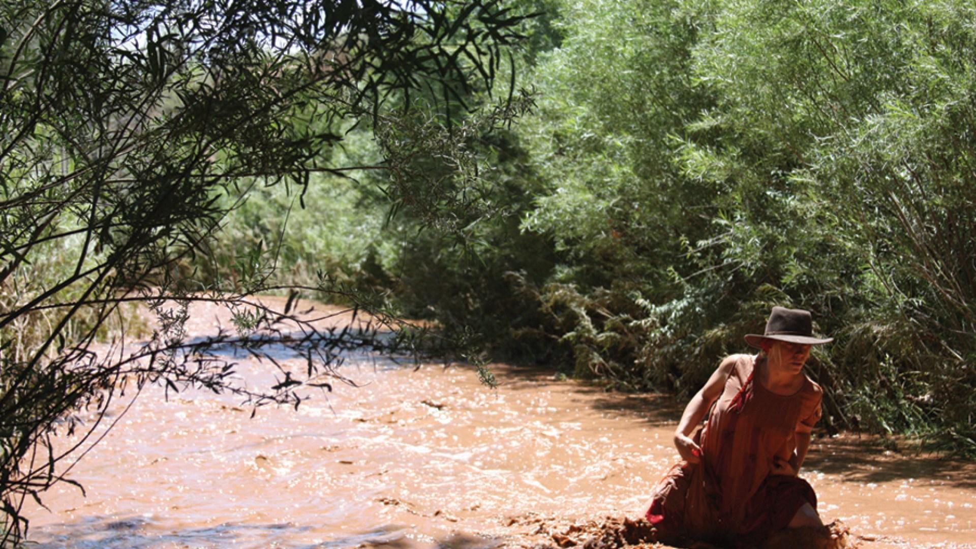 Landscape Studies: New Mexico 19