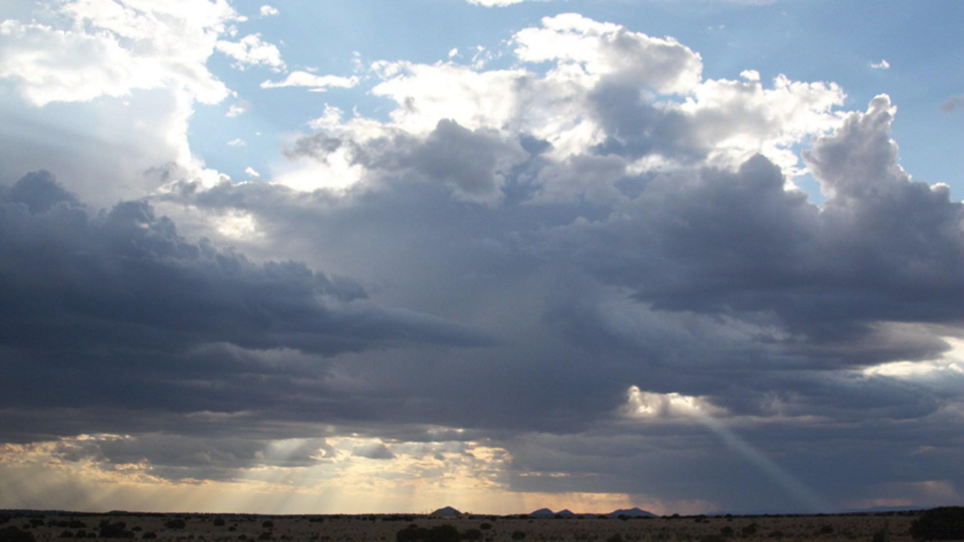 Landscape Studies: New Mexico 23