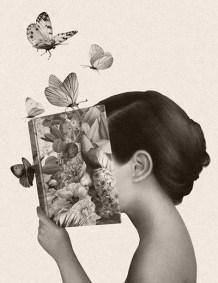 Biblioteca en flor de Marco Palena