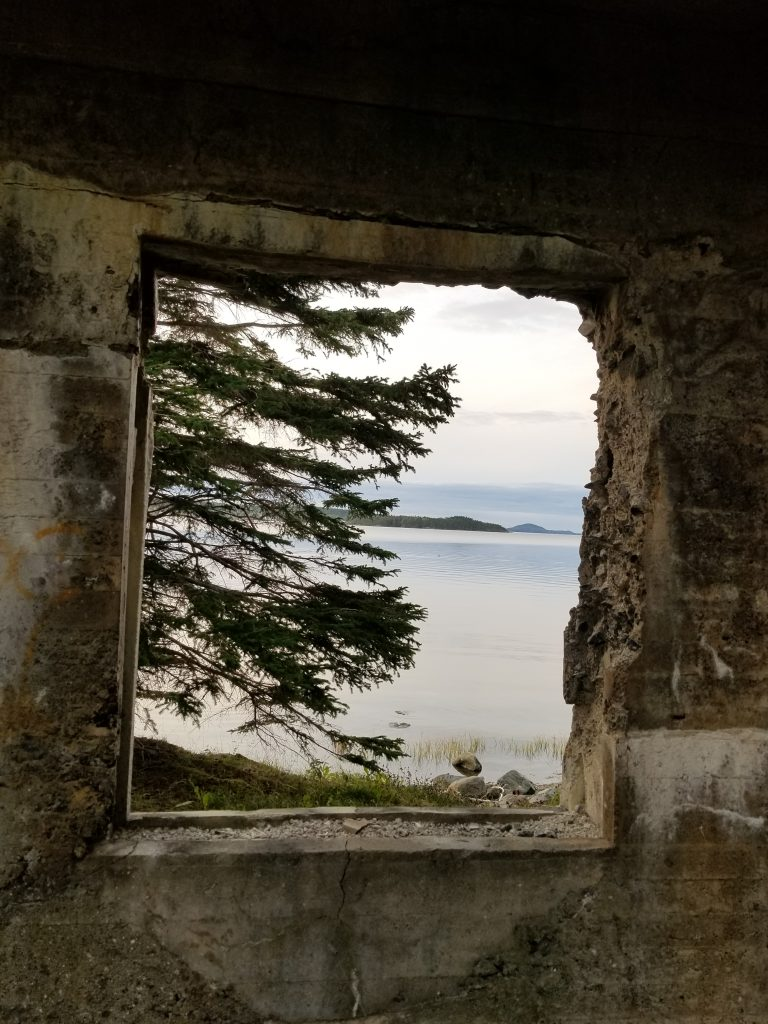 pulp mill ruins, campbellton, newfoundland. a pine tree is seeing through the old window