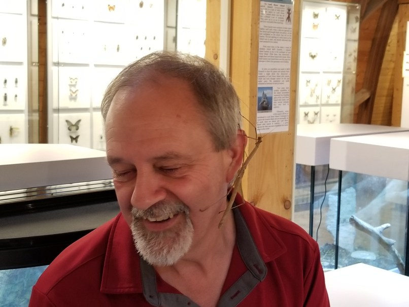 Lloyd, owner of the Newfoundland Insectarium and butterfly garden, with a walking stick bug crawling over his ear. He is smiling.