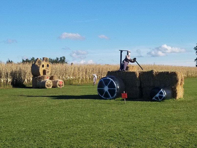 Kool Breeze Farms Hay Playground