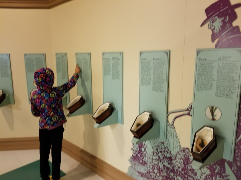 Girl reading about potato plant diseases at the Canadian Potato Museum