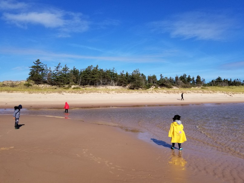 3 children wearing yellow, red, and gray raincoats at Basin Head Beach, Prince Edward Island. All children have their backs to the camera.